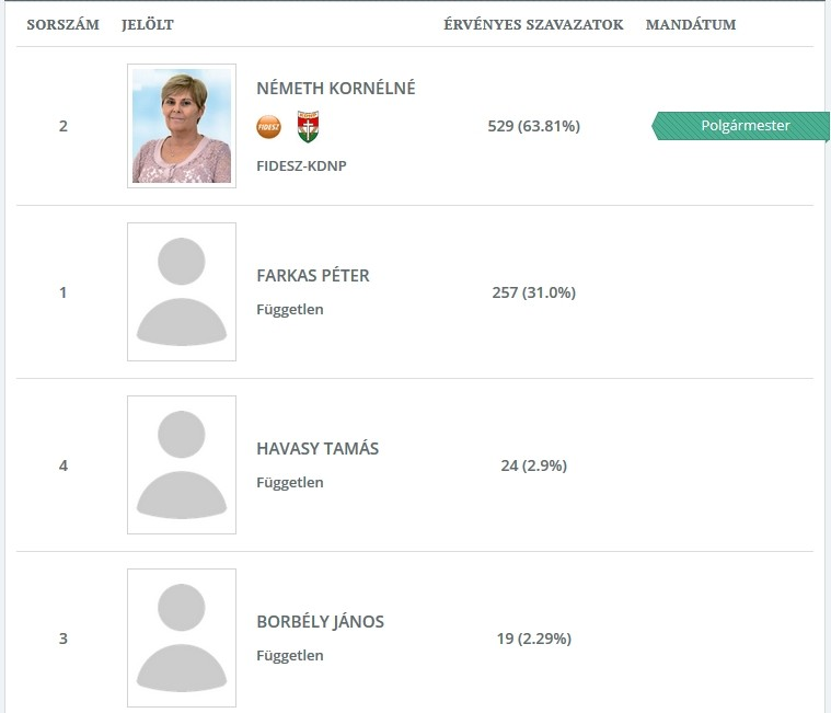 Elozetes2 Balatonszemes időközi polgármester-választás